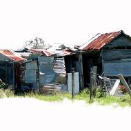 Brunkerville-sheds