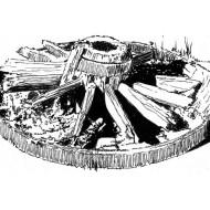 old-wheel