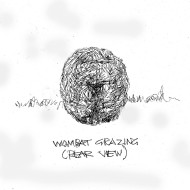 wombat-grazing